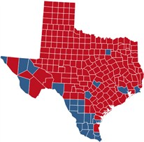 Business Ideas 2013 Texas Voting Map