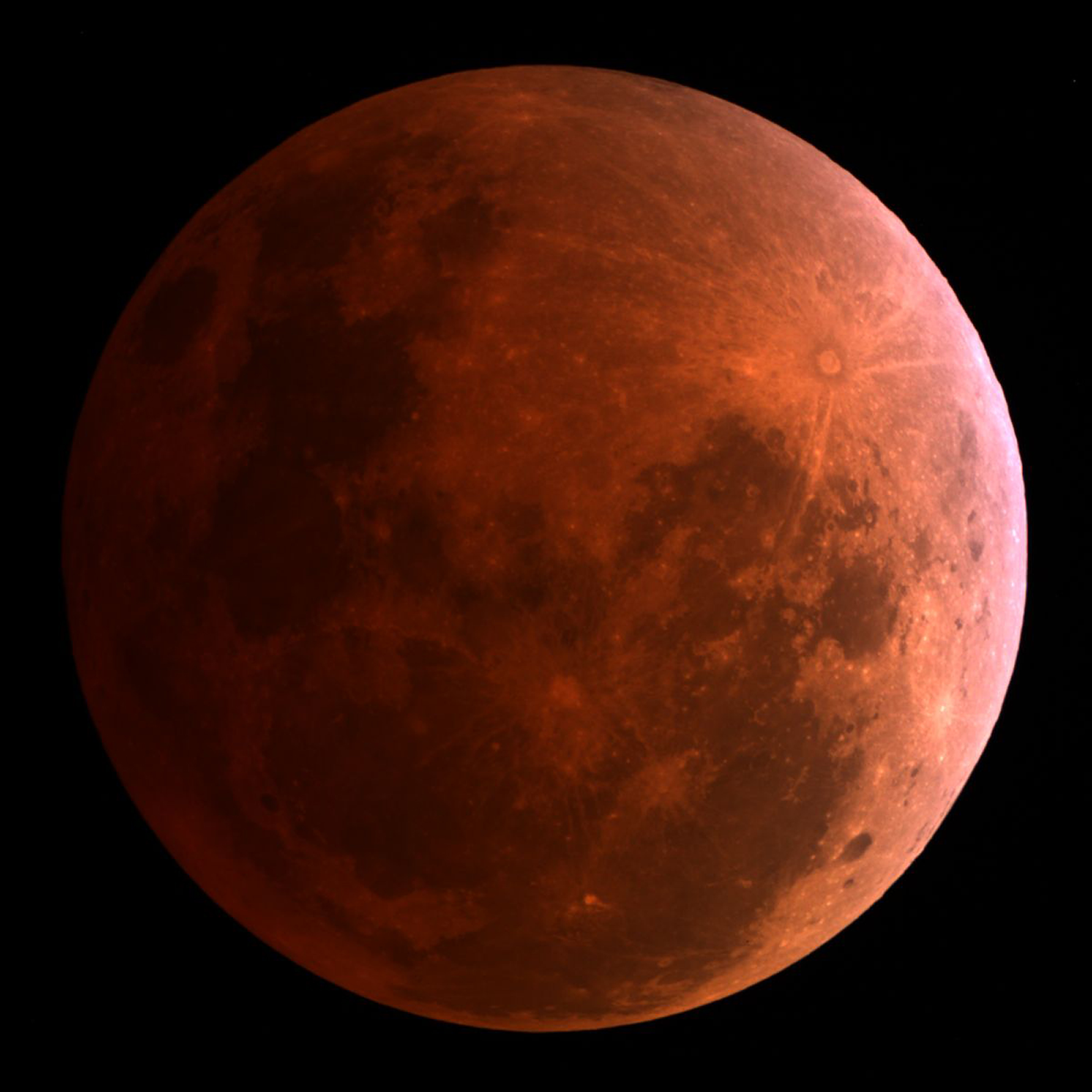 WND Exclusive Bloodmoons fallout NASA goes hiding Americas goto source mysteriously gets eclipsed Published 02162014 at 421 PM