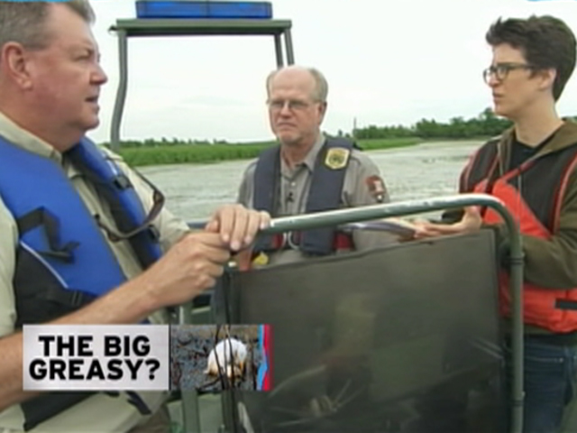 Can Louisiana's wetlands survive BP's oil?