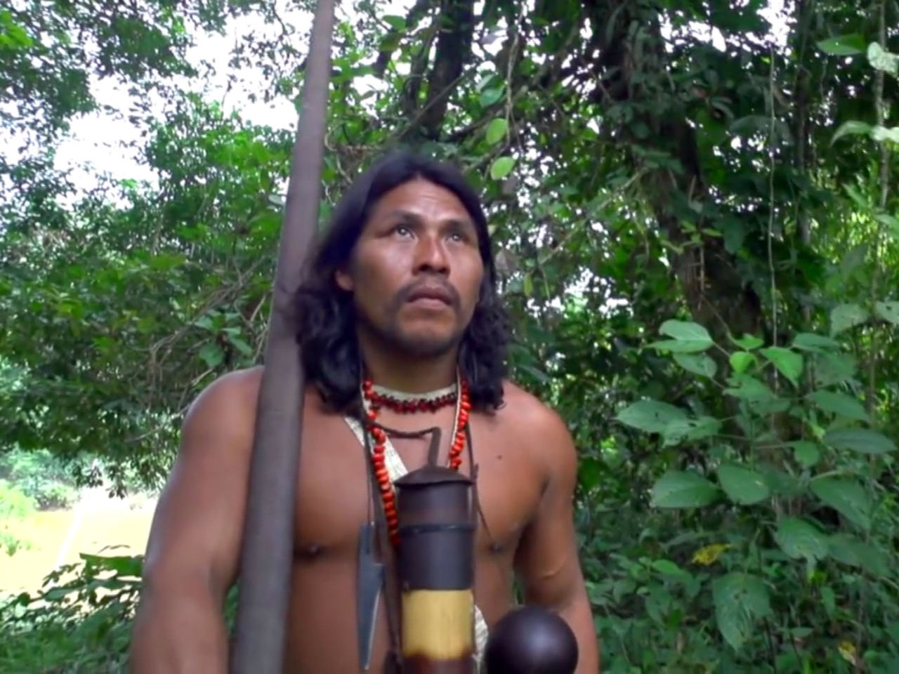 Tribes in Ecuador will fight rainforest auction