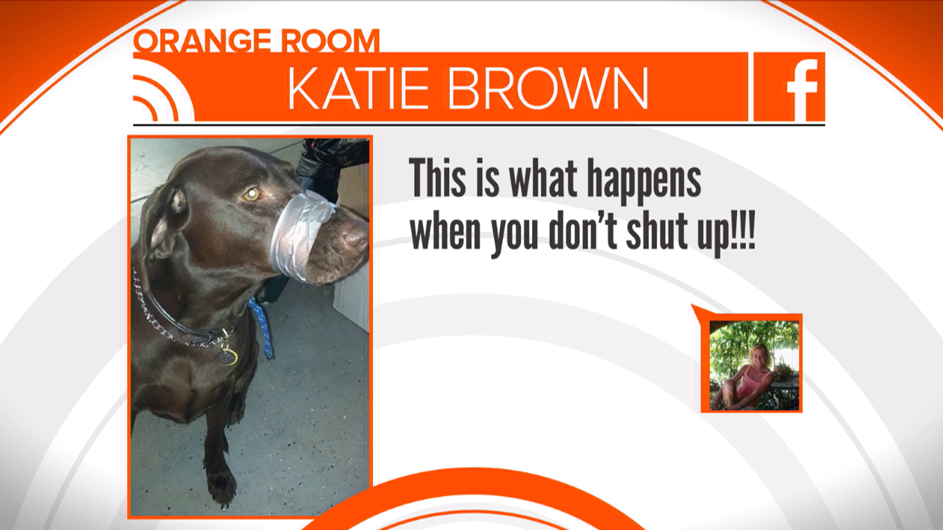 Florida Police Investigate Photo of Dog With Duct-Taped Mouth