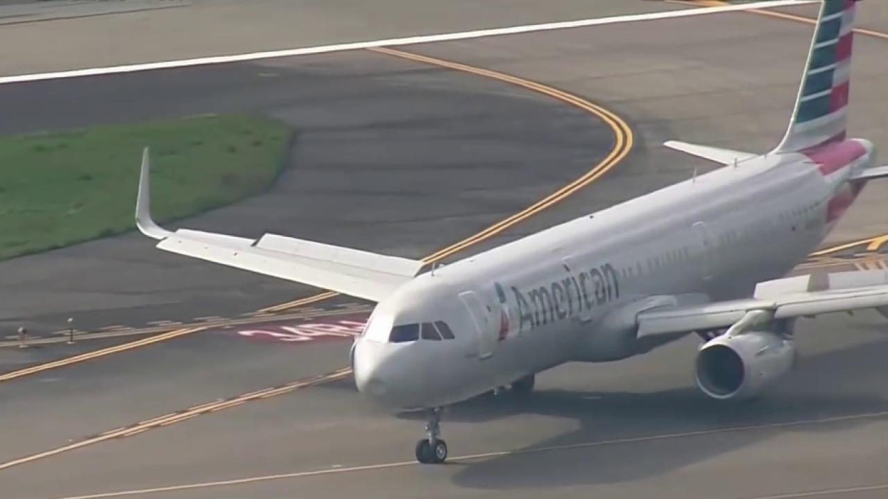 Bird Strike Forces American Airlines Jet To Make Emergency