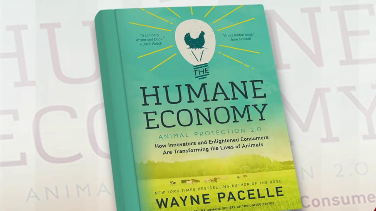 Why more companies consider animal welfare