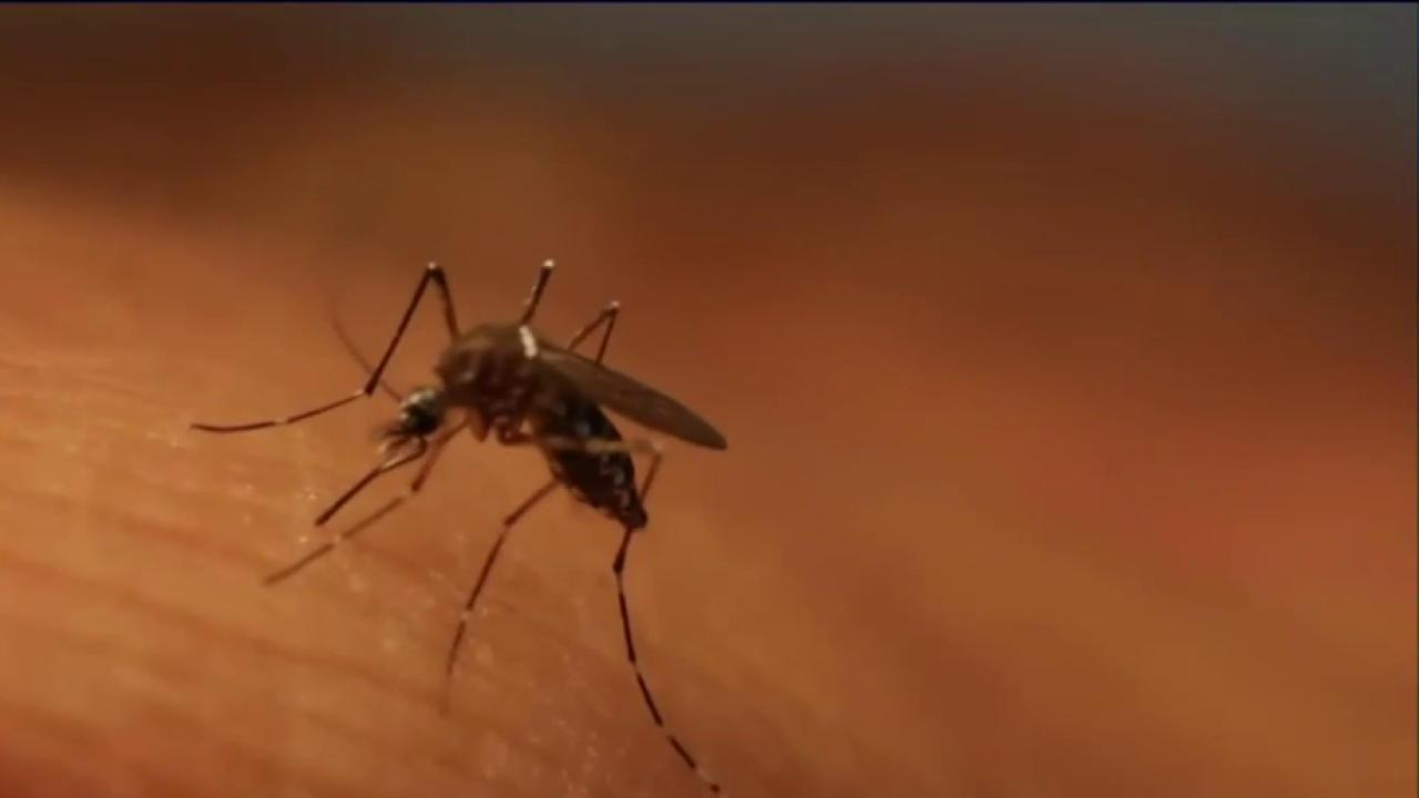 CDC takes action as Zika spreads