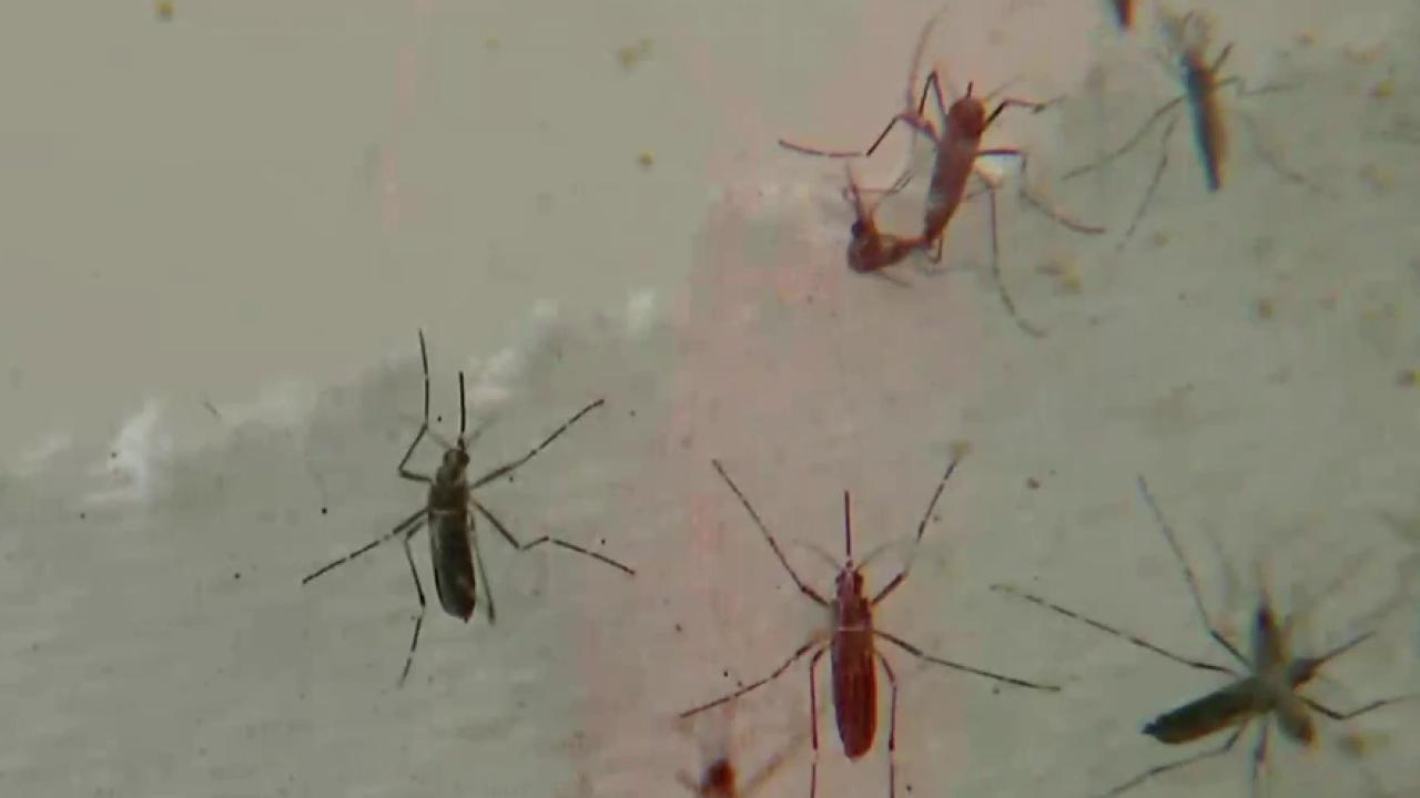 Obama admin to divert funds to fight Zika