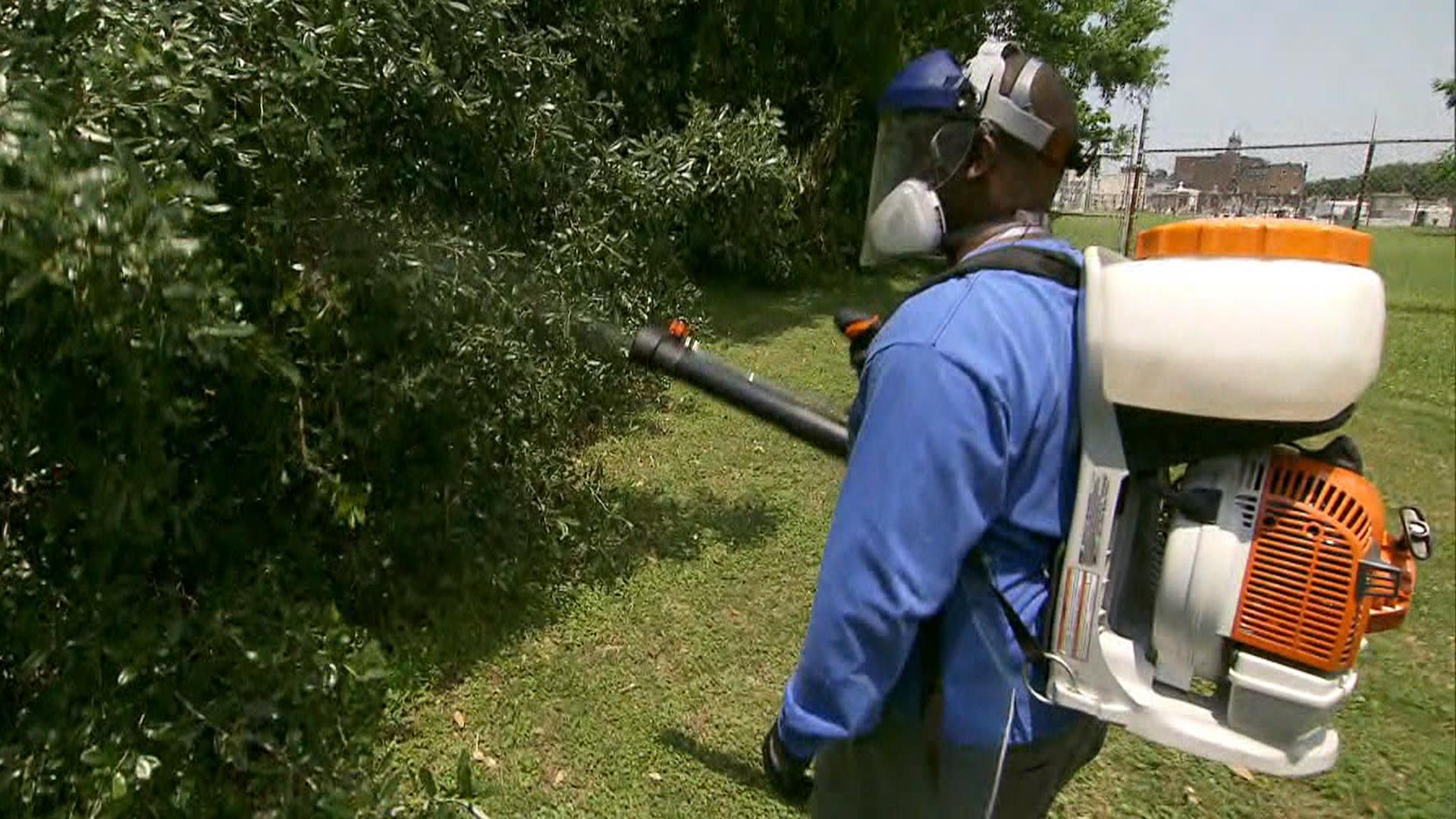 Is Zika spreading in Florida? New report might link more cases to Miami