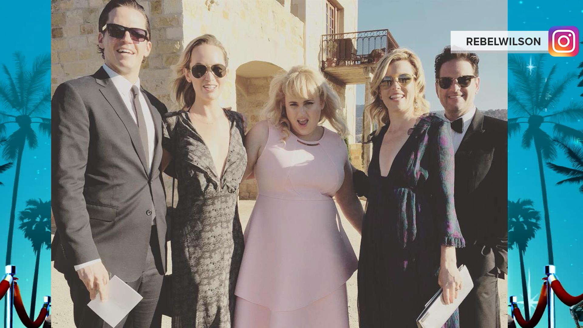 Anna Camp Weds Skylar Astin In Aca-perfect Gown! See The