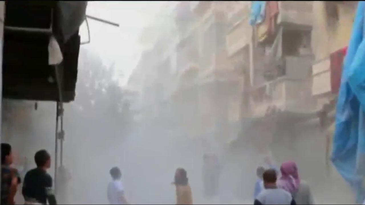 Russia halts airstrikes on Aleppo