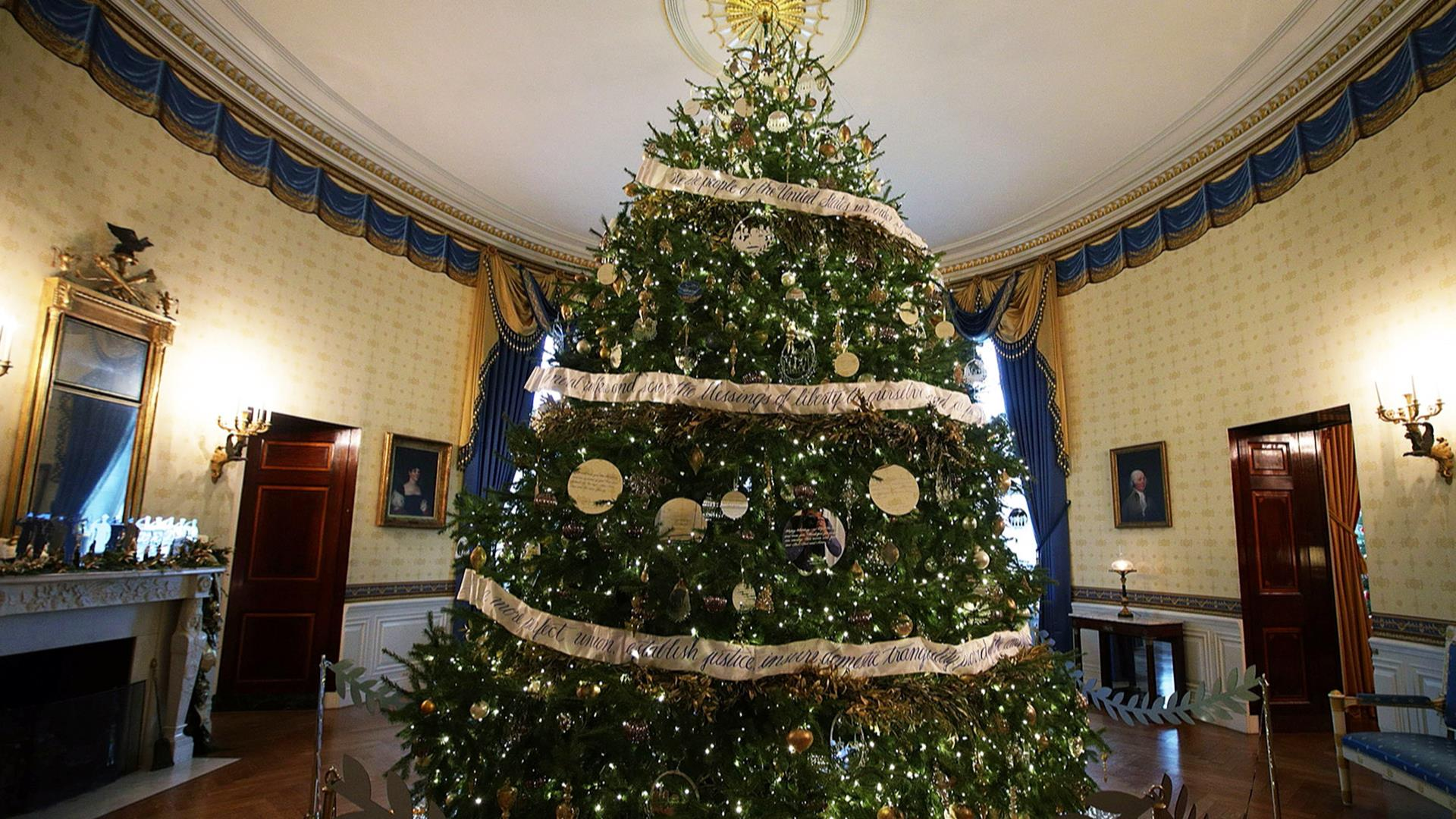white house christmas display 2016 - White House Christmas Decorations 2016