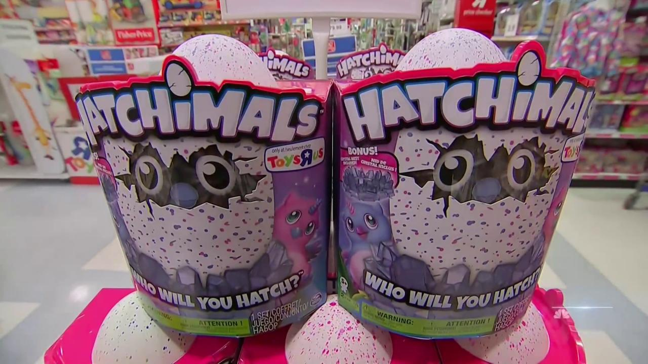 Hatchimal Is Latest Toy Craze Taking Over America