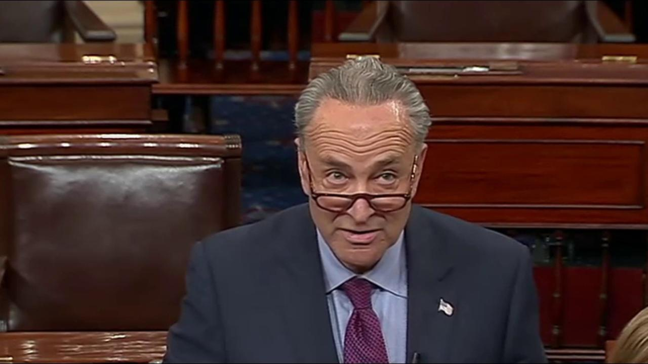 Schumer to Senate Colleagues: 'History is...