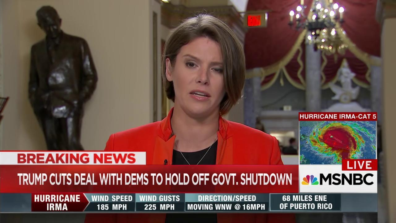 Hunt: Pelosi and Schumer called Trump's...