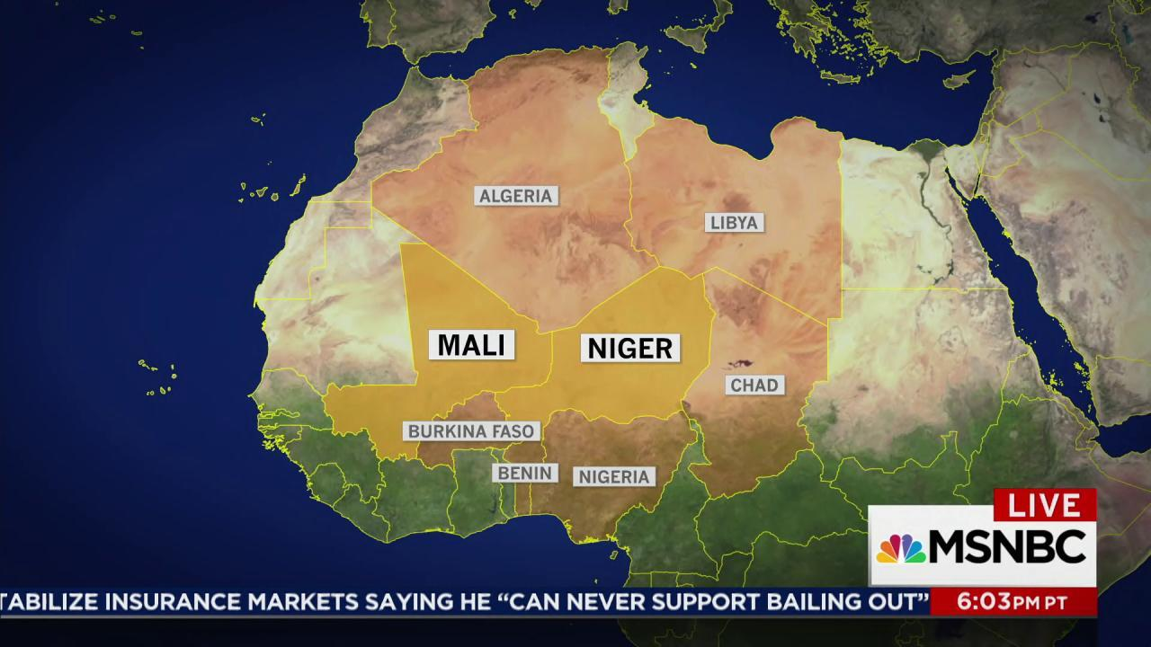 Trump travel ban preceded US Niger exposure