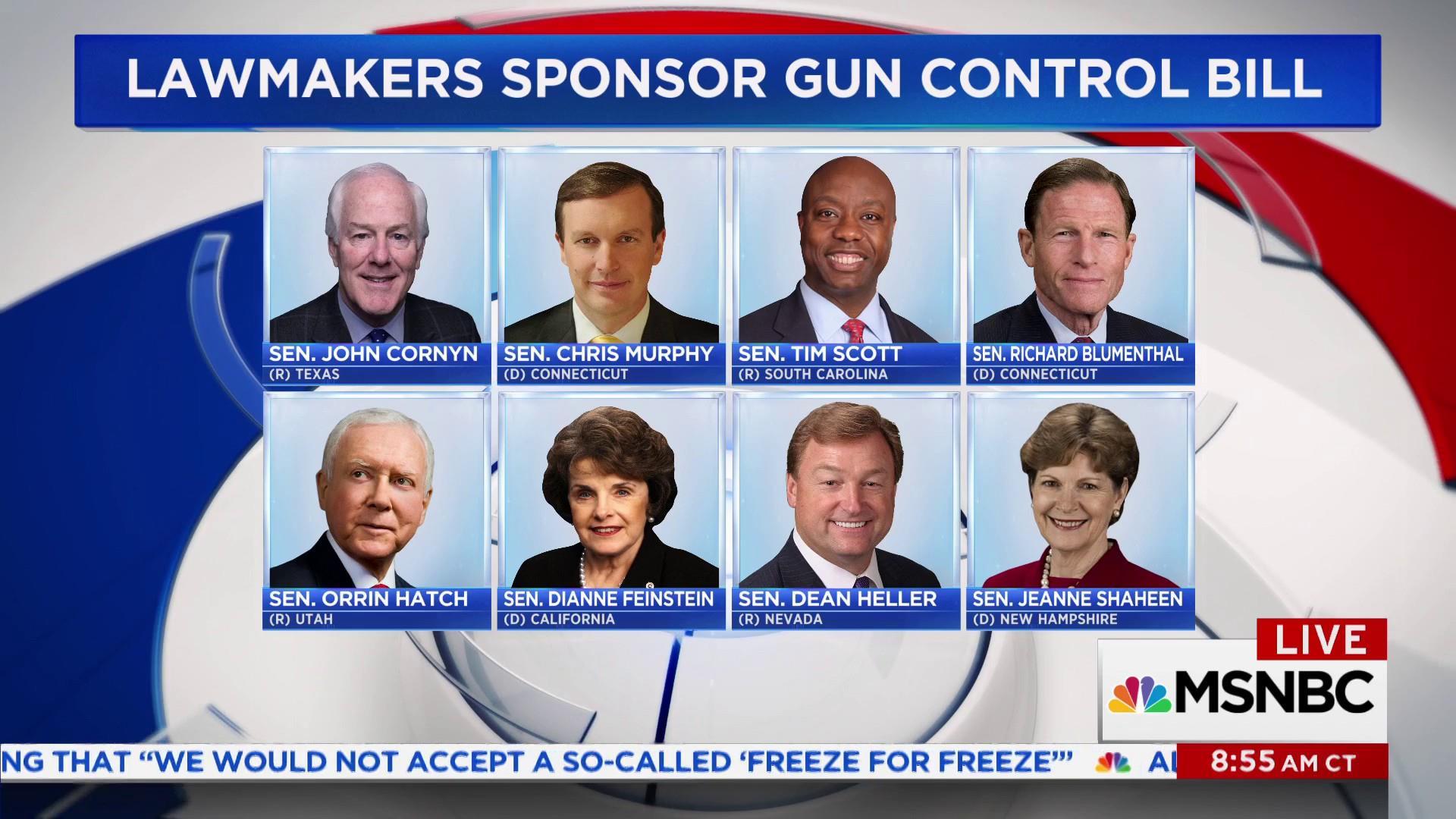 Senators unveil new bipartisan gun control...