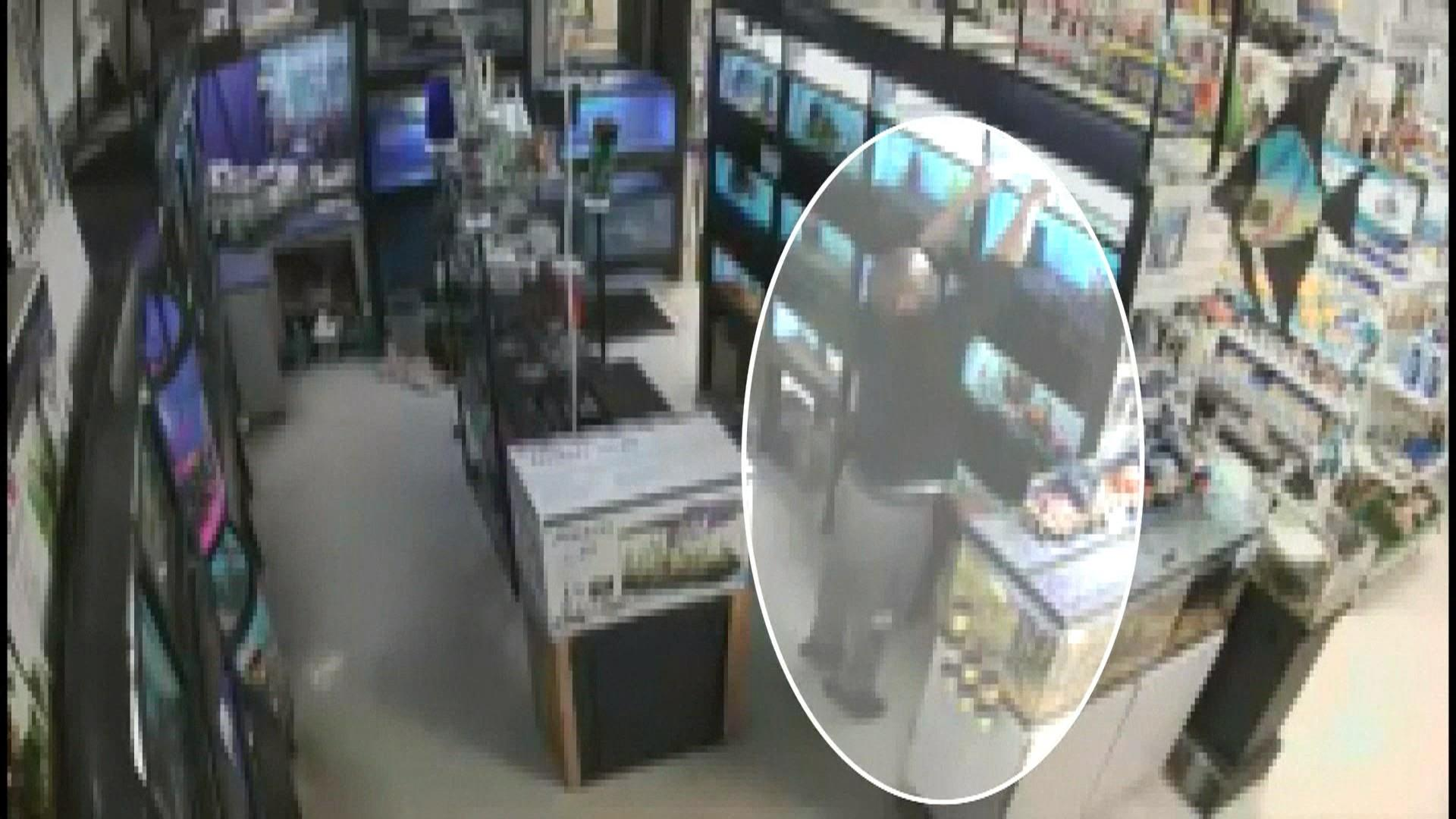 Bait and switch to steal exotic fish from pet store is for Exotic fish store