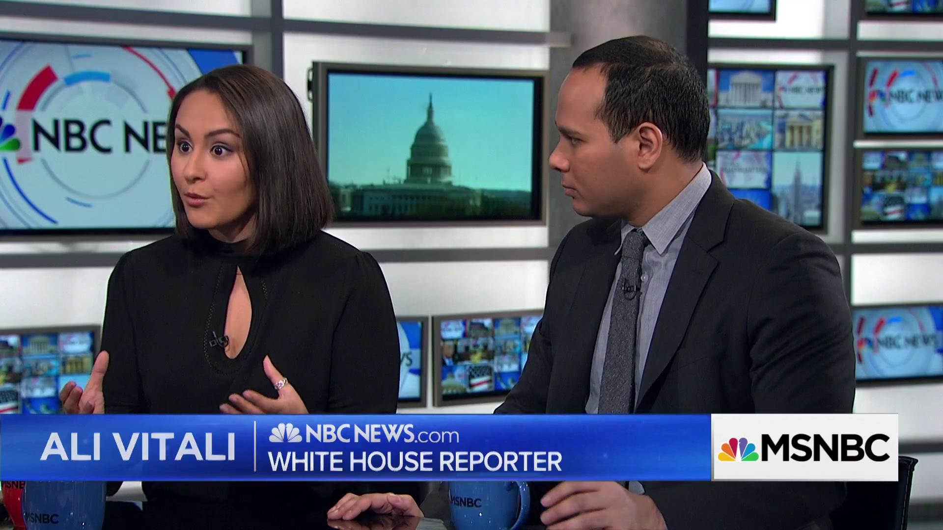 journalist ali vitali and sopan deb speak with msnbc s david gura