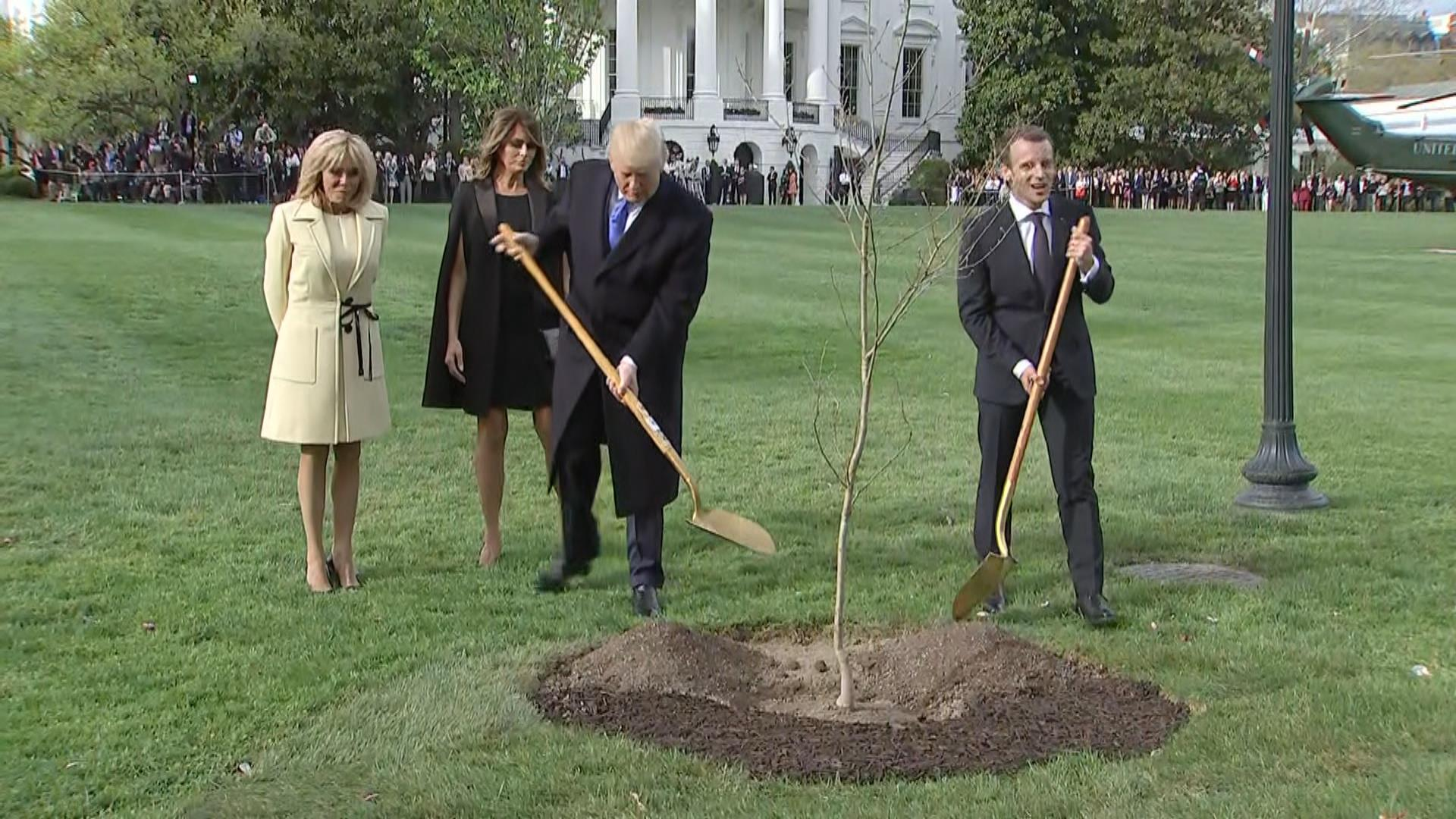 Mystery on the White House South Lawn