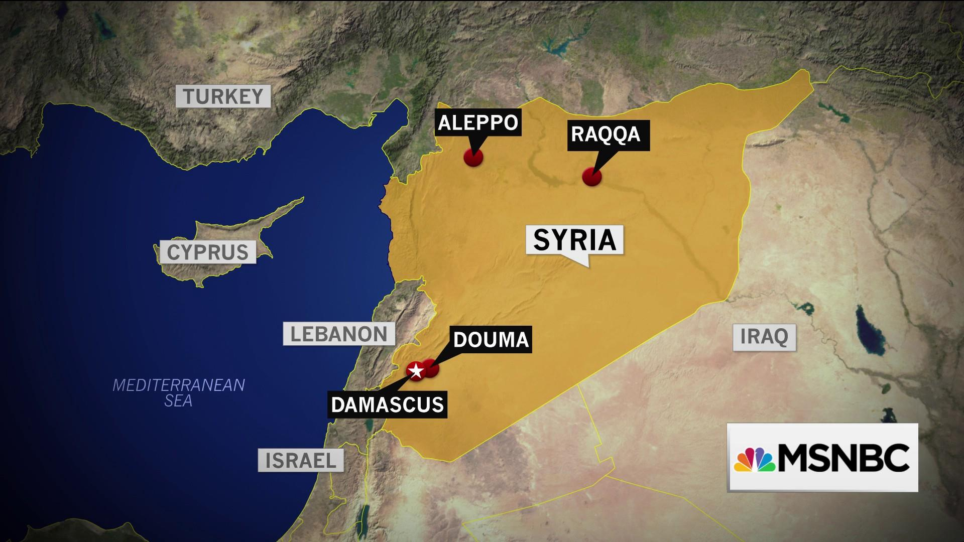 Expert tells Joy Reid 'in a sense, Assad has won this war'