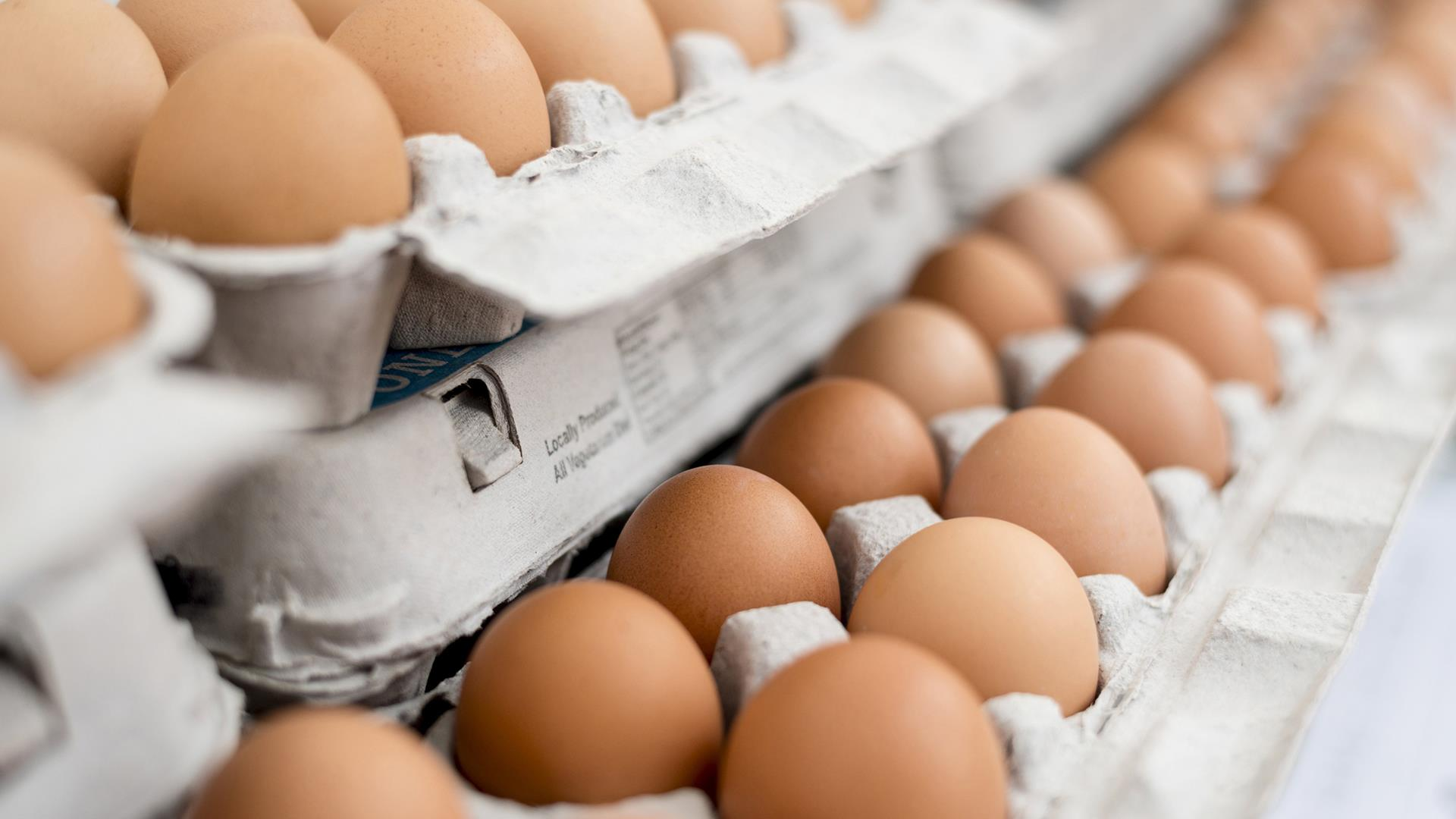 Are Eggs Bad For You Scientists Explain If Eating Eggs Every Day Is Healthy