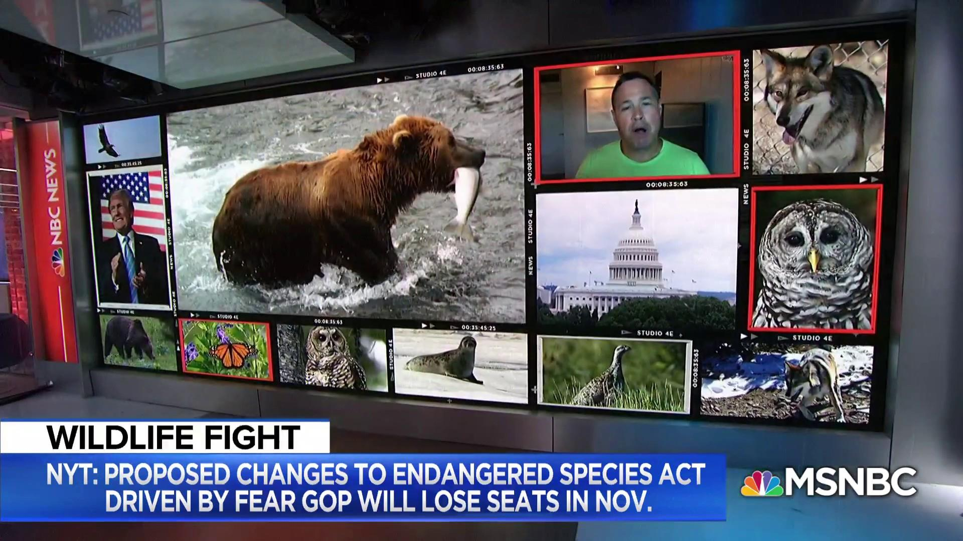 Corwin: Trump admin 'is at war with American wildlife'