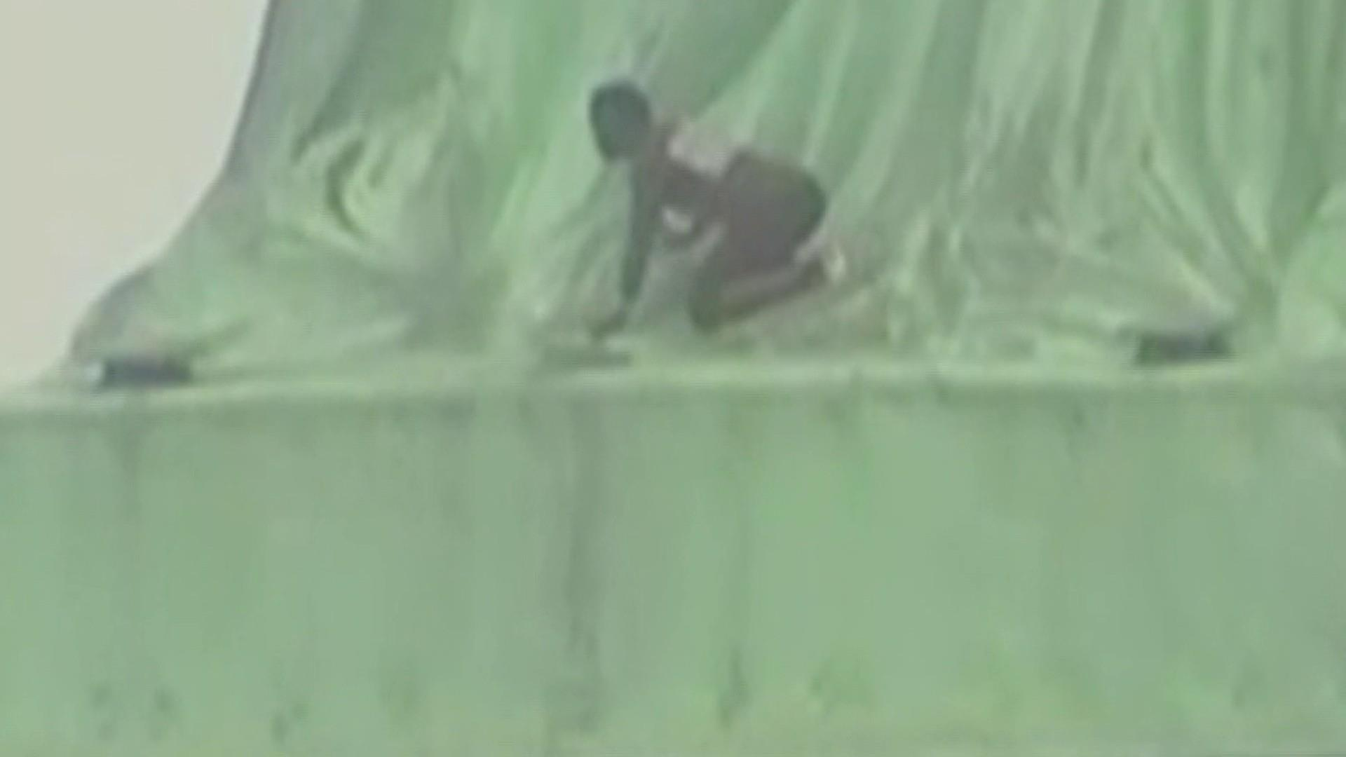 Protester tries to climb Statue of Liberty