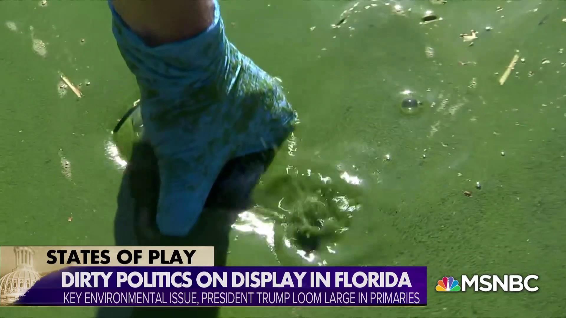 Toxic algae puts environment at the top of mind for Florida voters