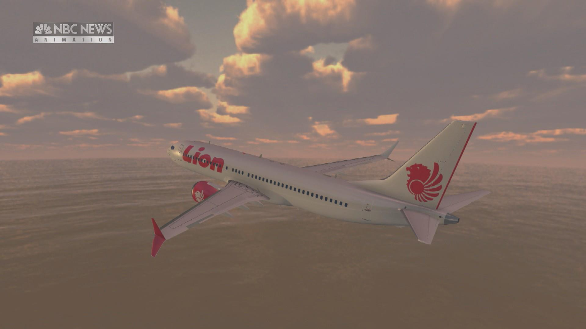 Lion Air jet may have been found in sea; airline official fired