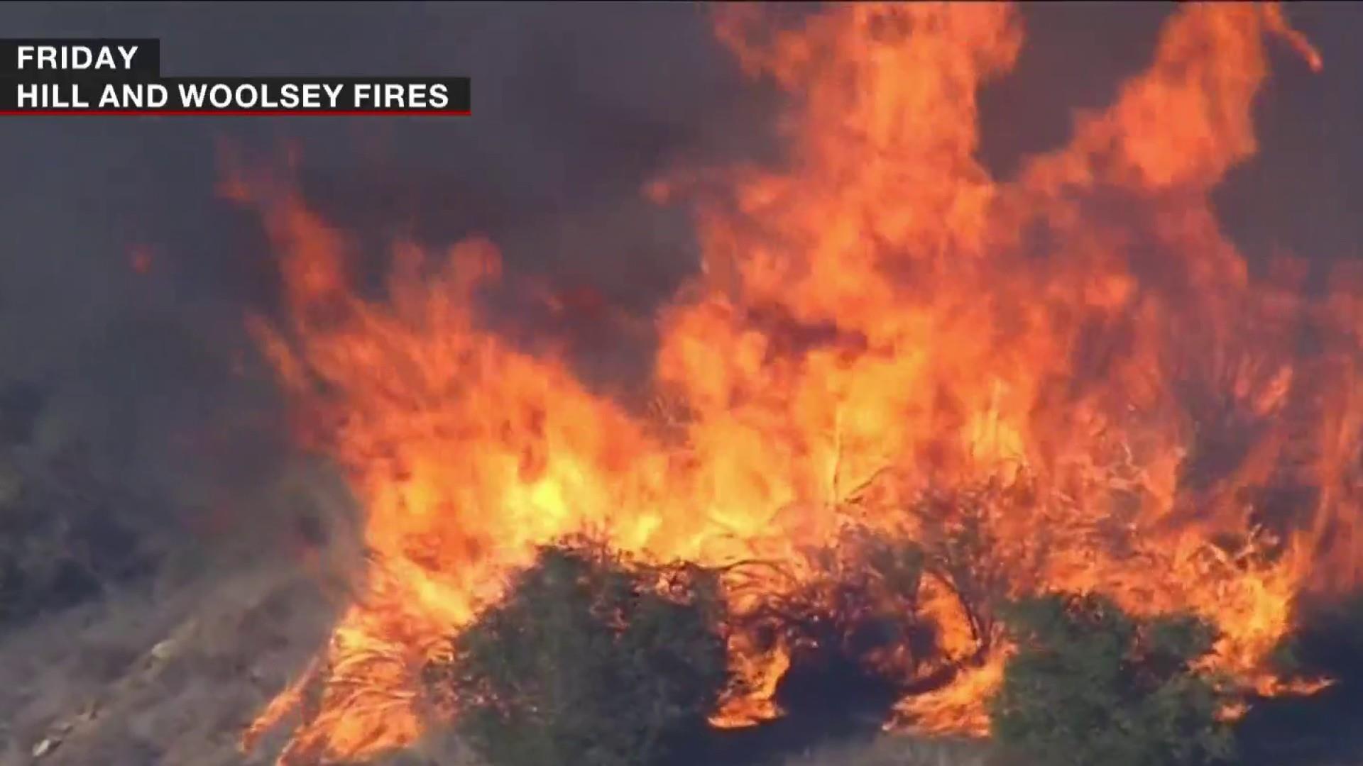 Trump blames fire deaths on 'gross mismanagement'