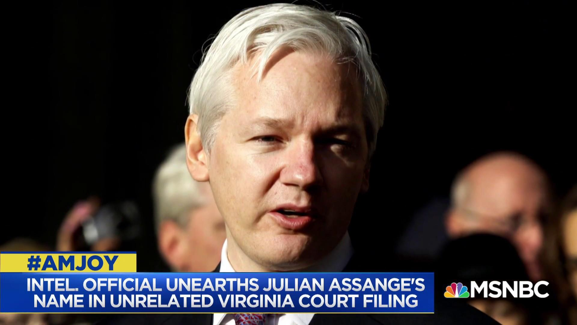 Cynthia Alksne: Assange could be indicted for hacking into election