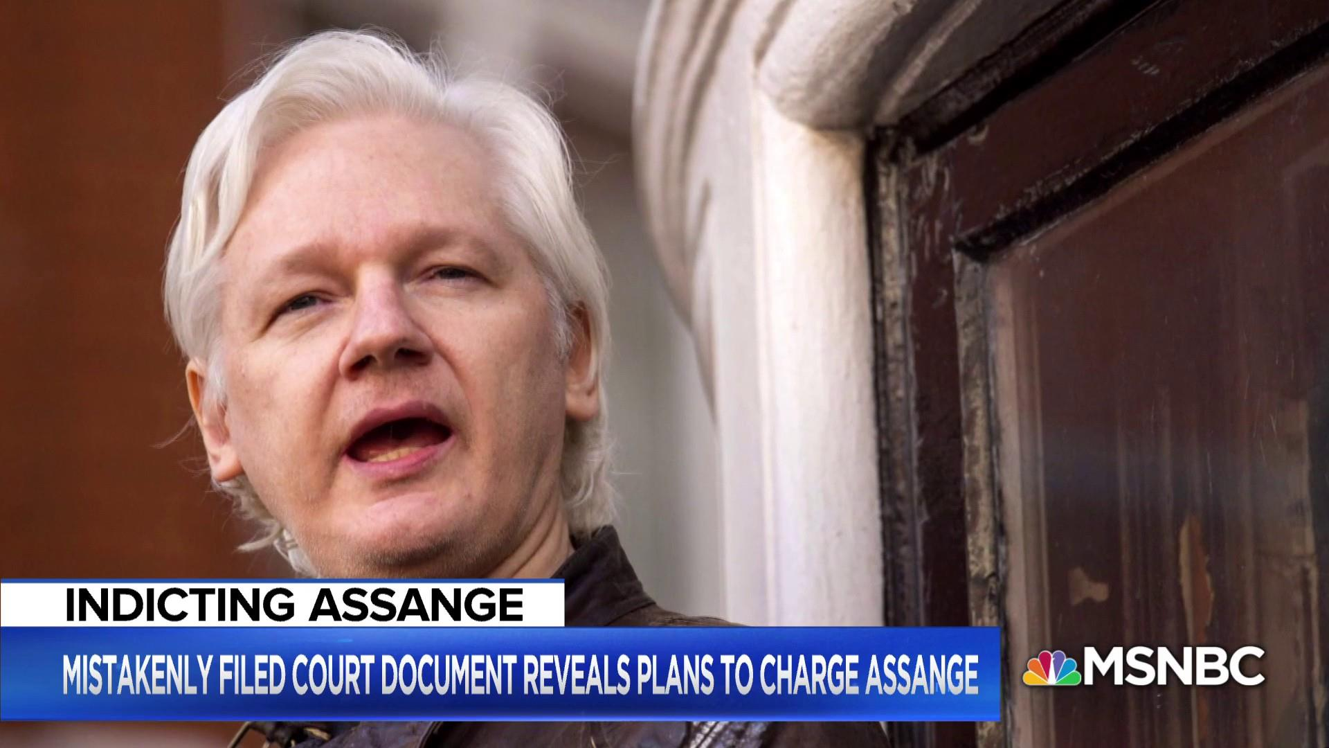 Big Question: What could the accidental filing about Julian Assange mean for the Russia Probe and President Trump?
