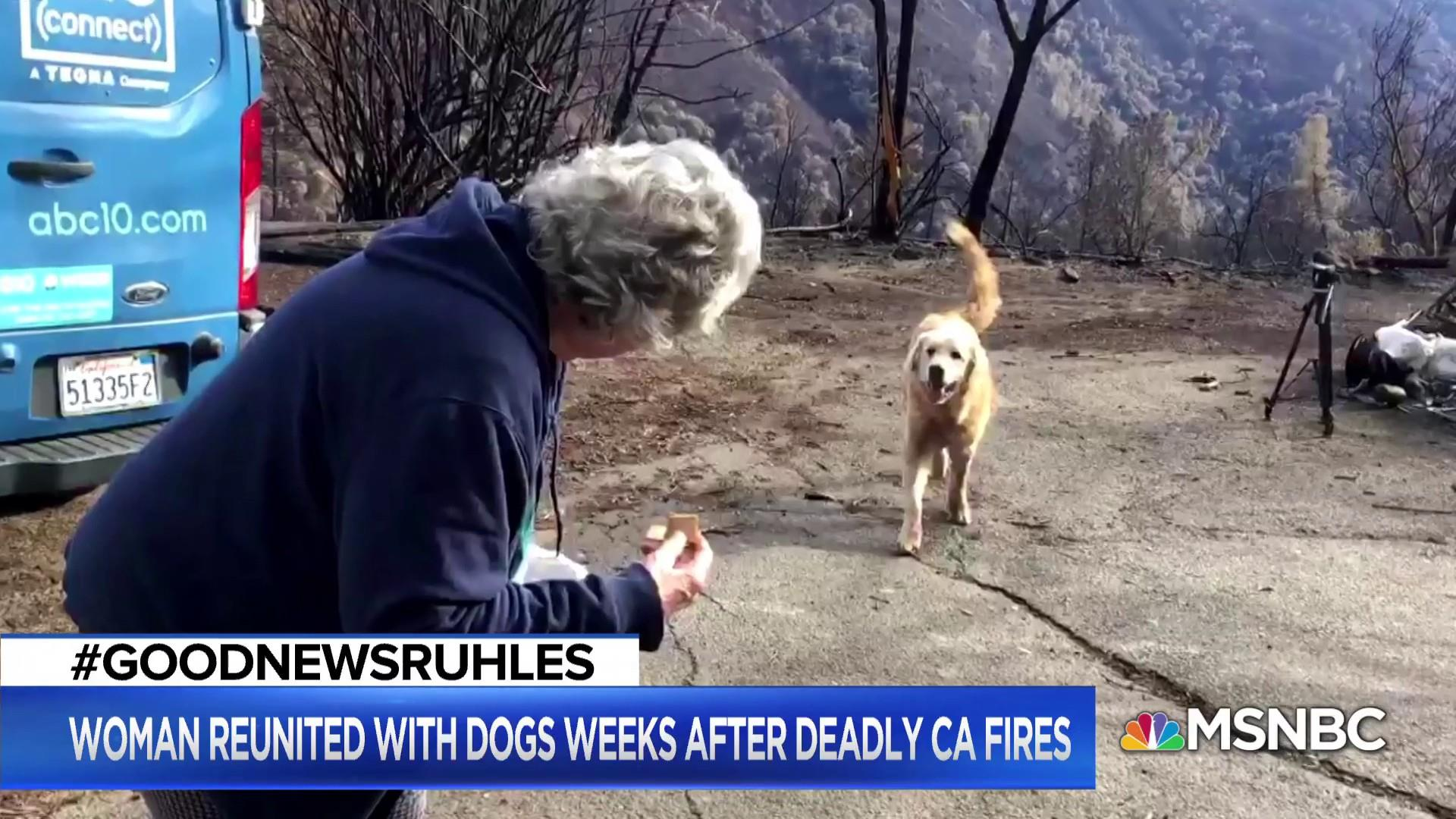 #GoodNewsRUHLES: Dog waits for family at burnt home after CA fires