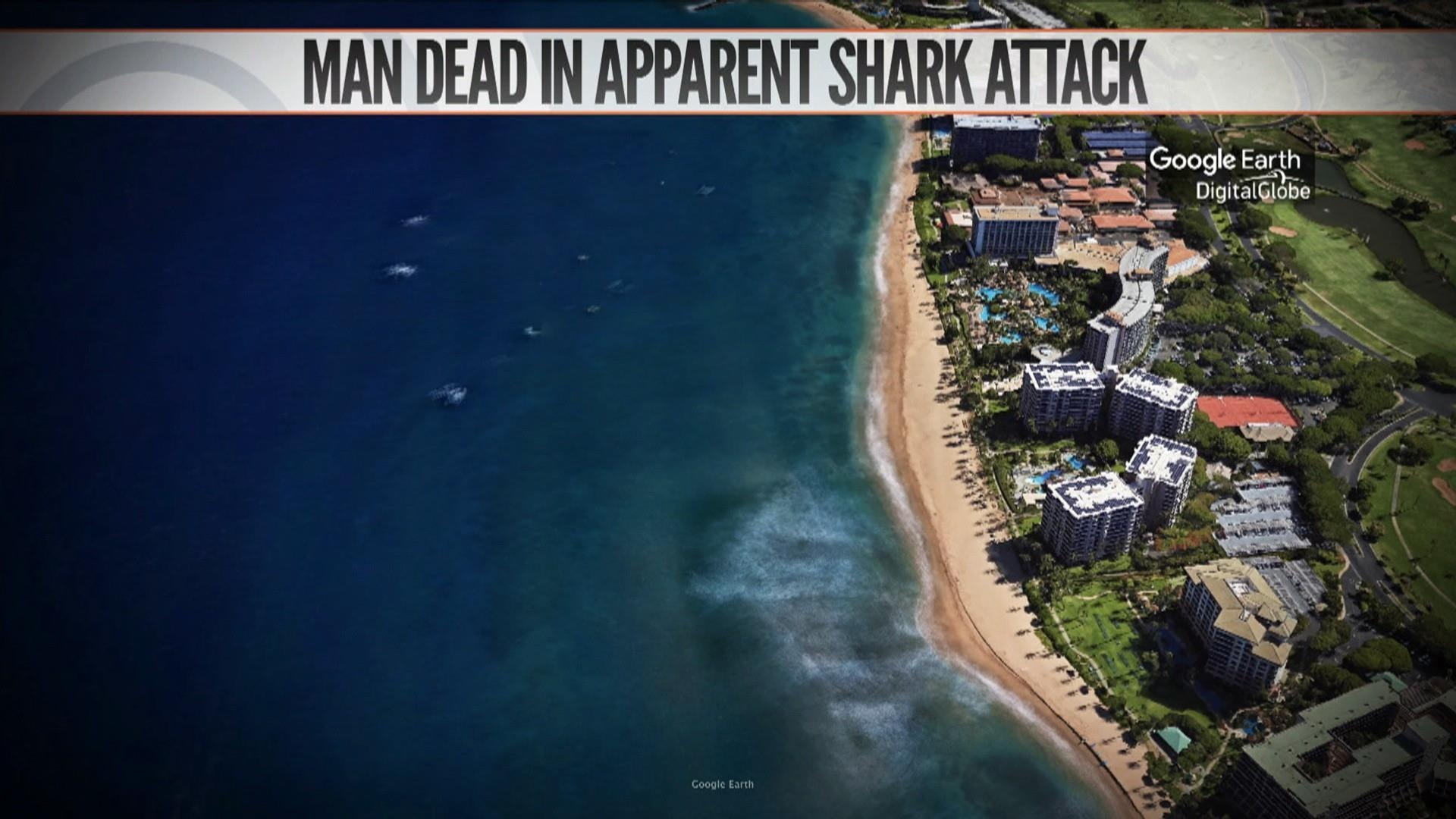 Flipboard: Tourist killed in apparent shark attack in Hawaii