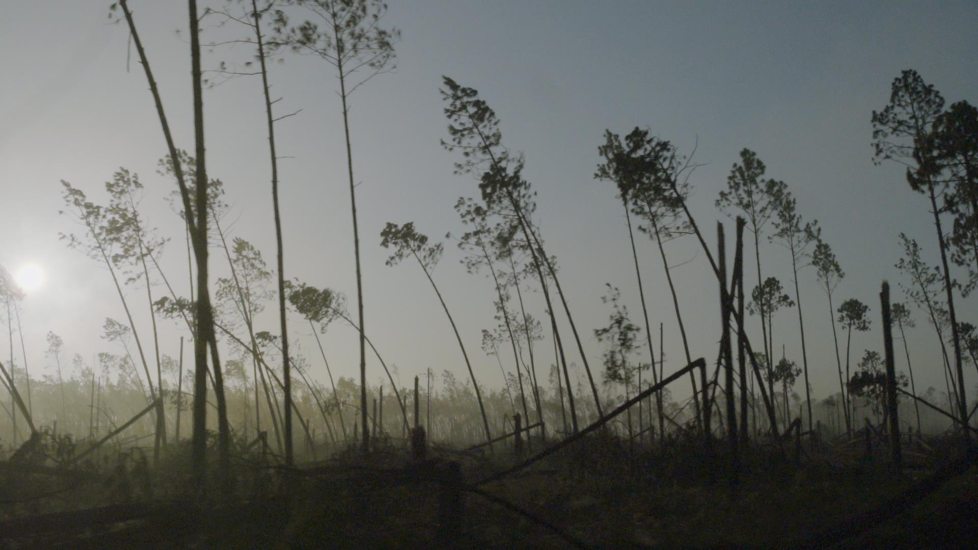 Hurricane-hit Florida Panhandle awaits aid as wildfire risk looms