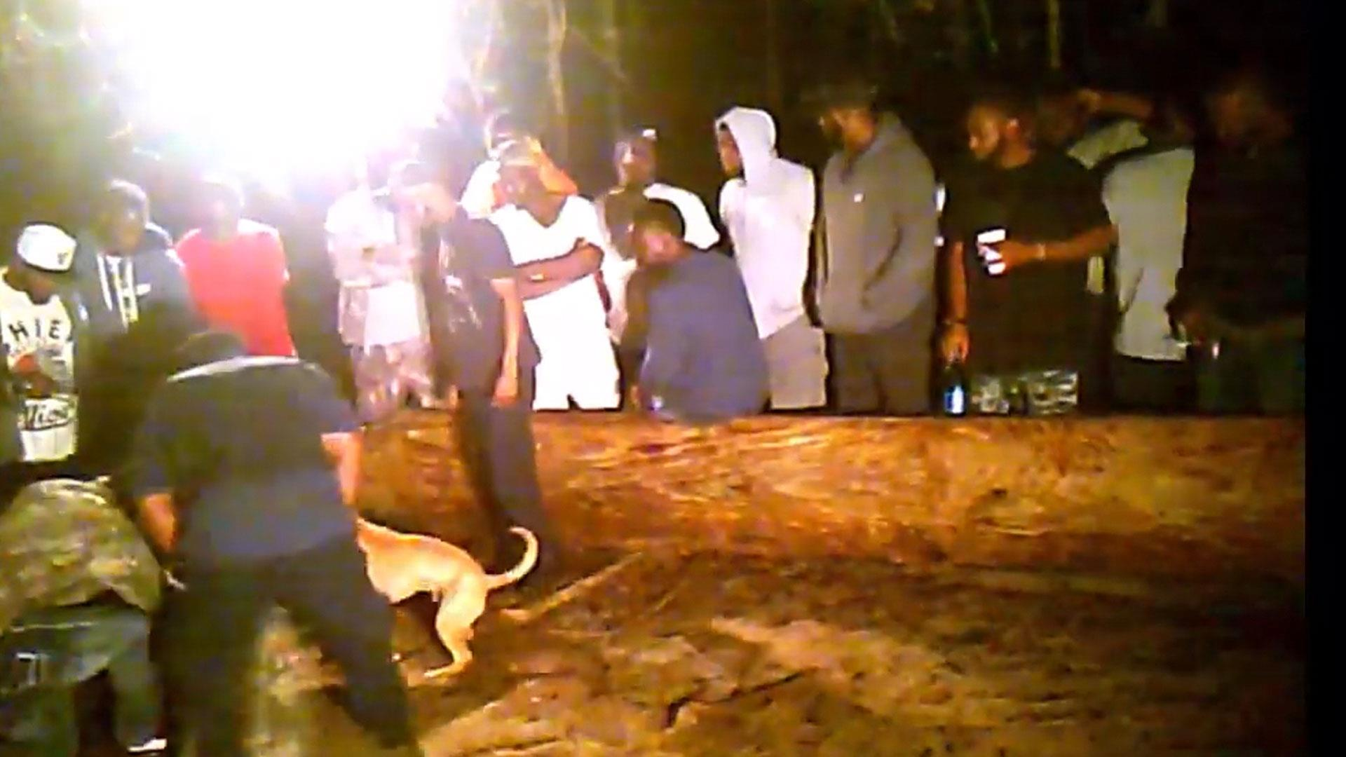 Undercover video offers gruesome look at Florida dogfighting ring