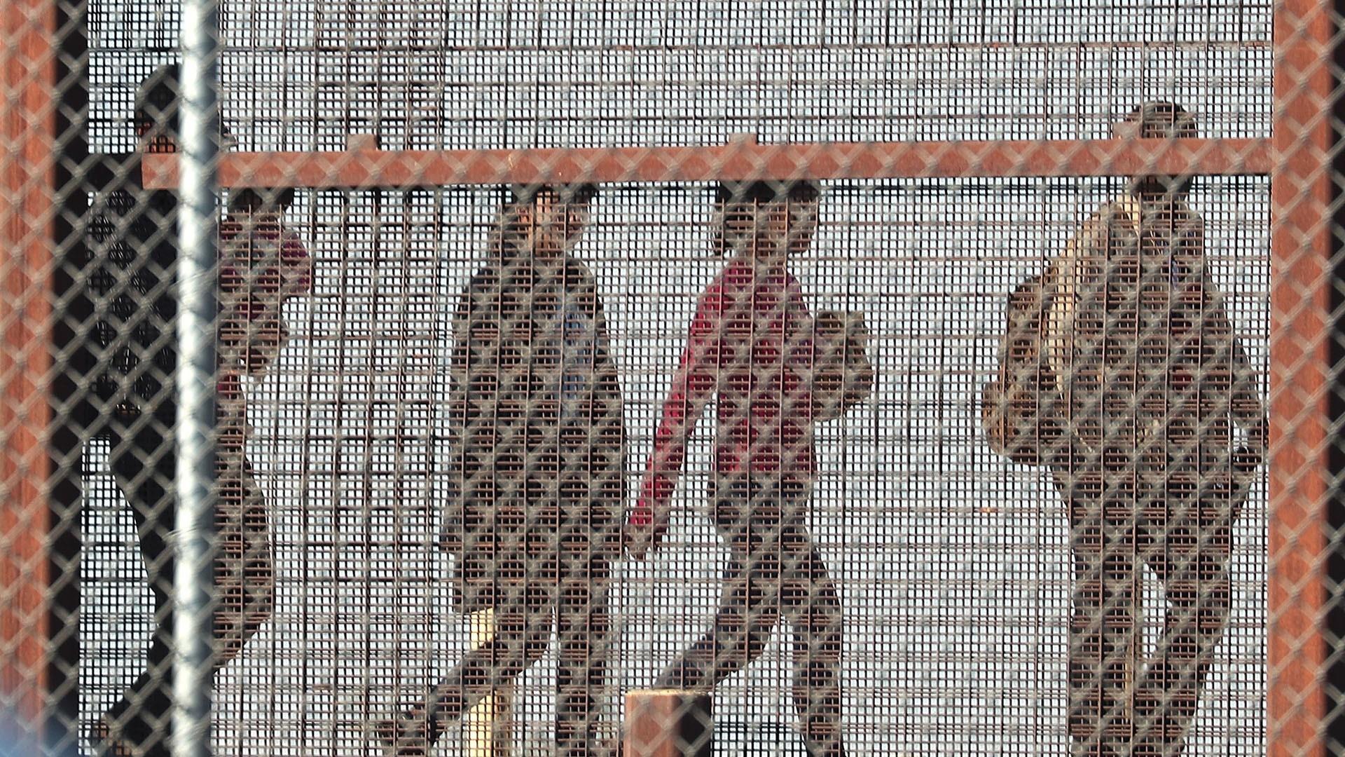 Border crossings may drop as result of summer season, not Trump deal