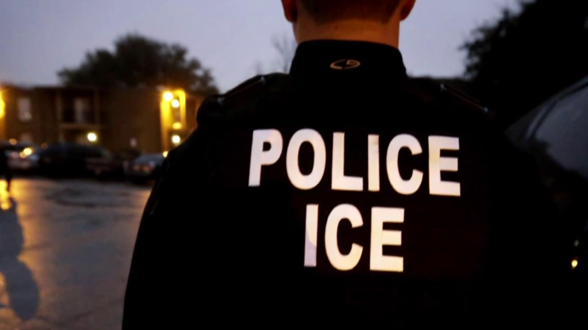 Why were Trump's mass immigrant raids postponed?