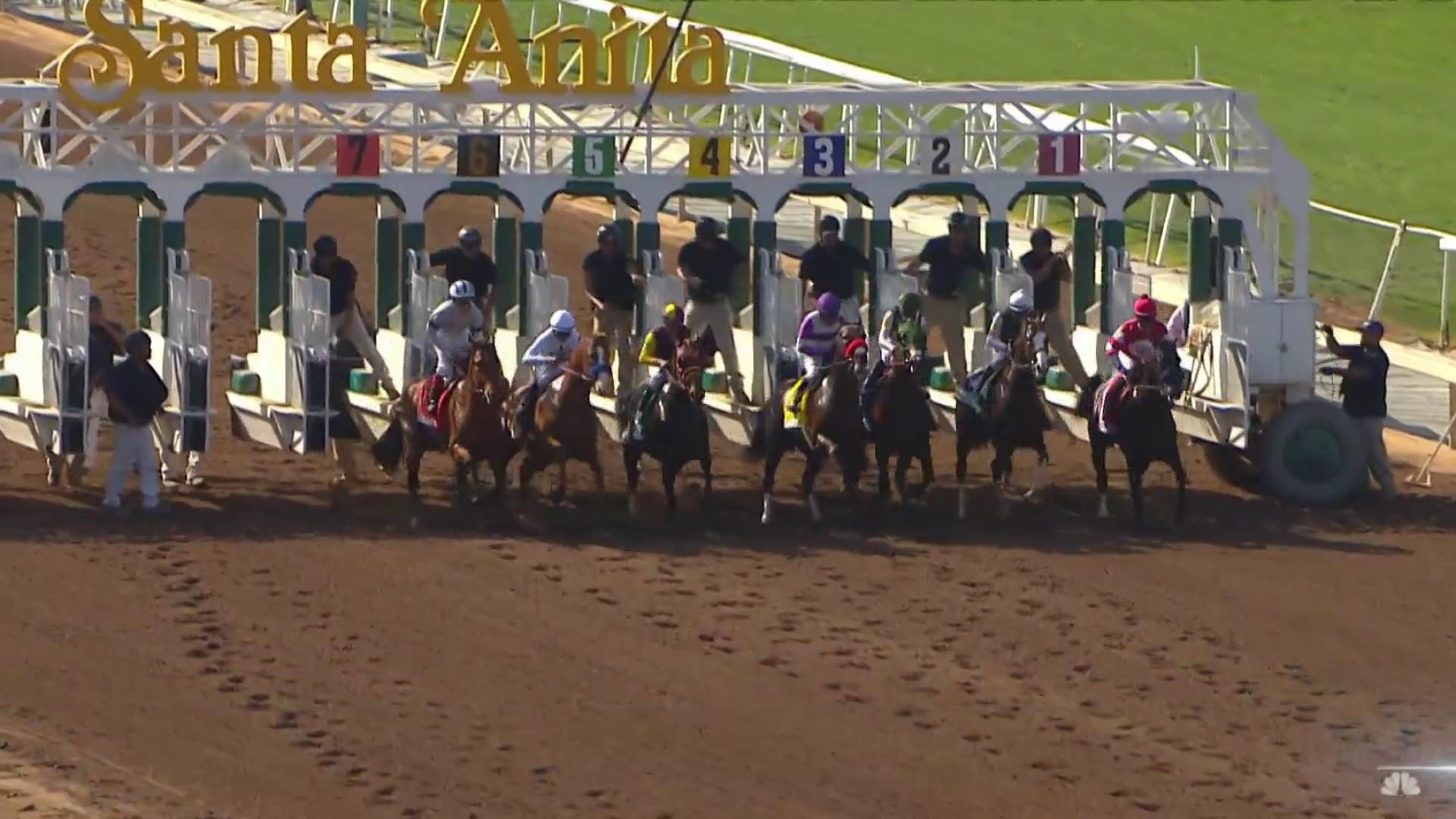 Outrage after 30th horse dies at Santa Anita racetrack since December