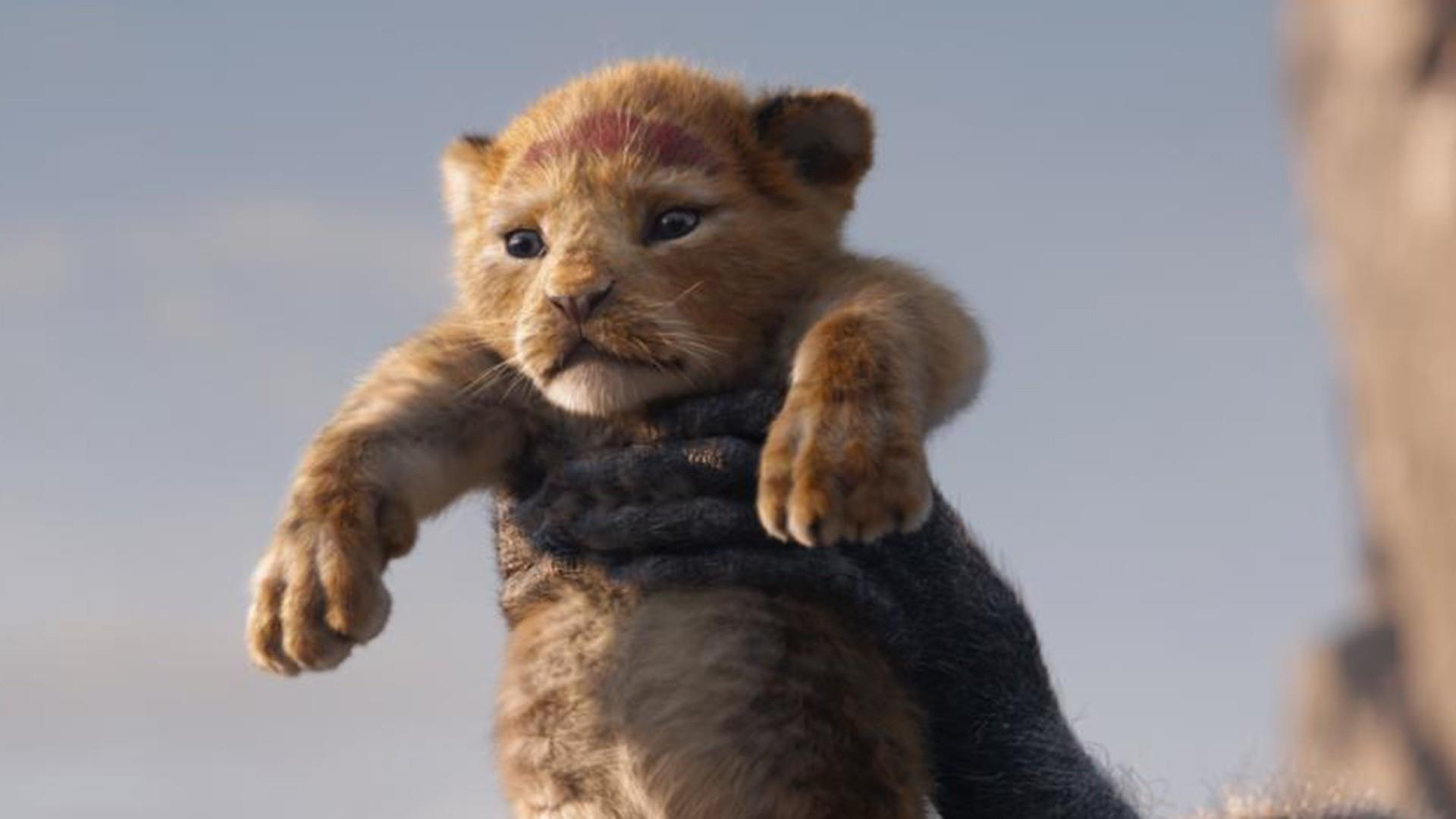 Best movies to check out this summer: 'Lion King' and more