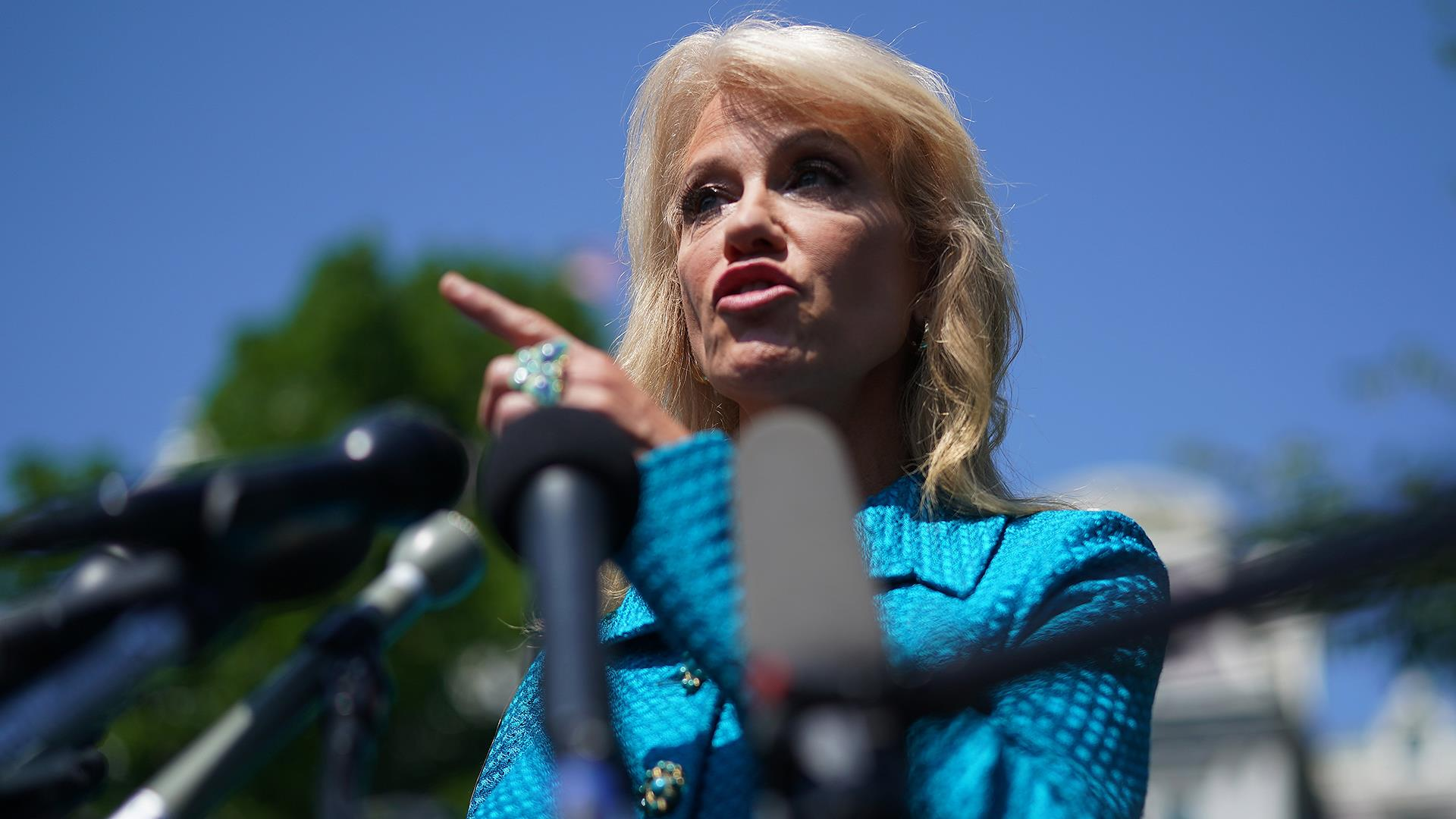 Defending Trump, White House adviser Kellyanne Conway asks a reporter: 'What's your ethnicity?'
