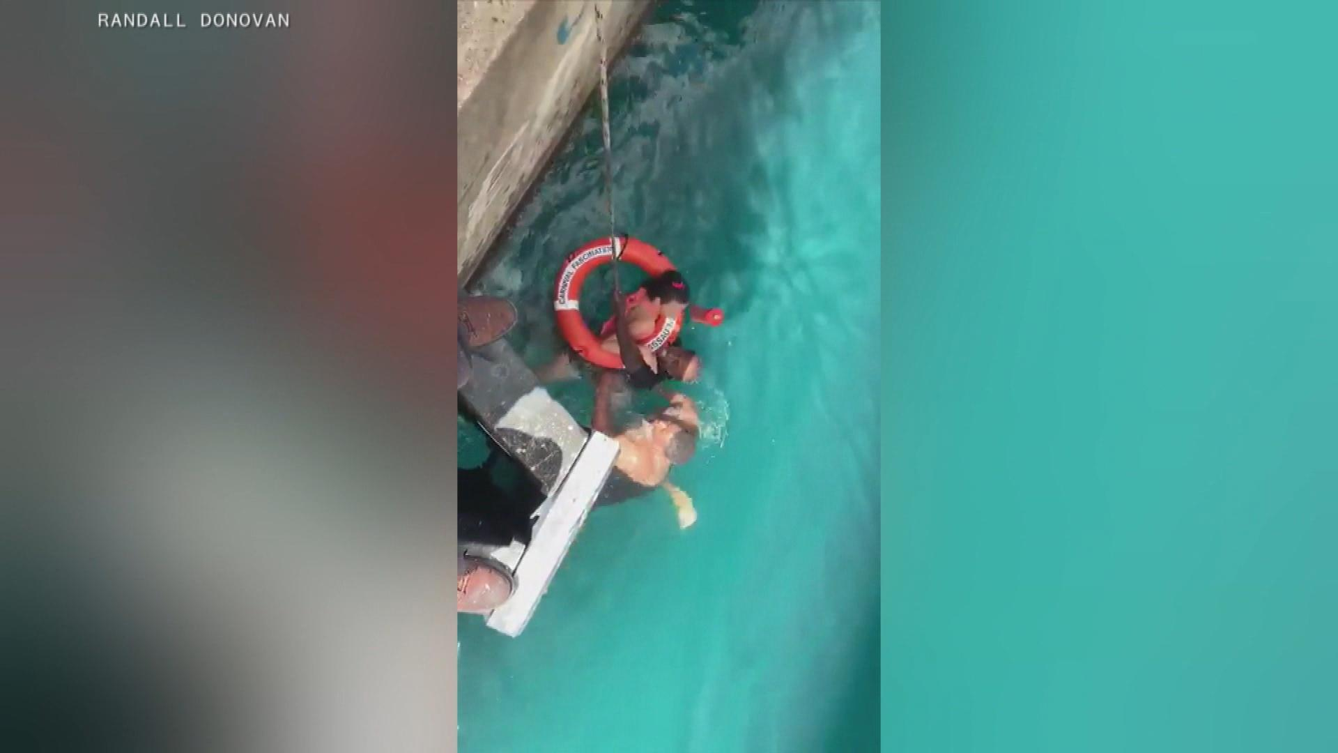 Video shows rescue of cruise-ship passenger in wheelchair who fell from dock into water