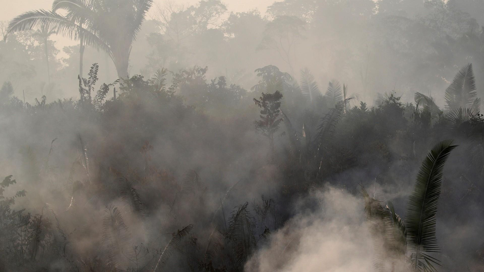 How the Amazon's fires, deforestation affect the U.S. Midwest