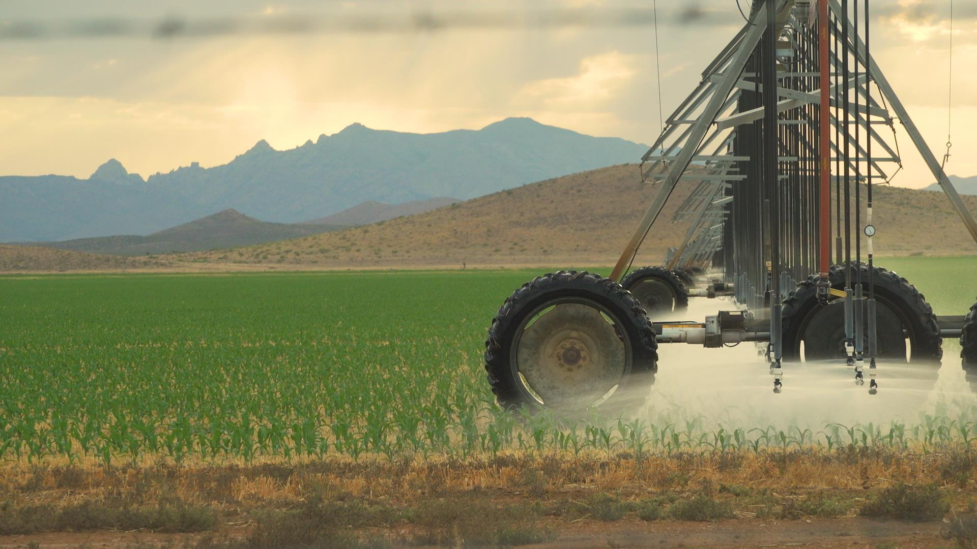 Draining Arizona: Residents say corporate mega-farms are drying up their wells