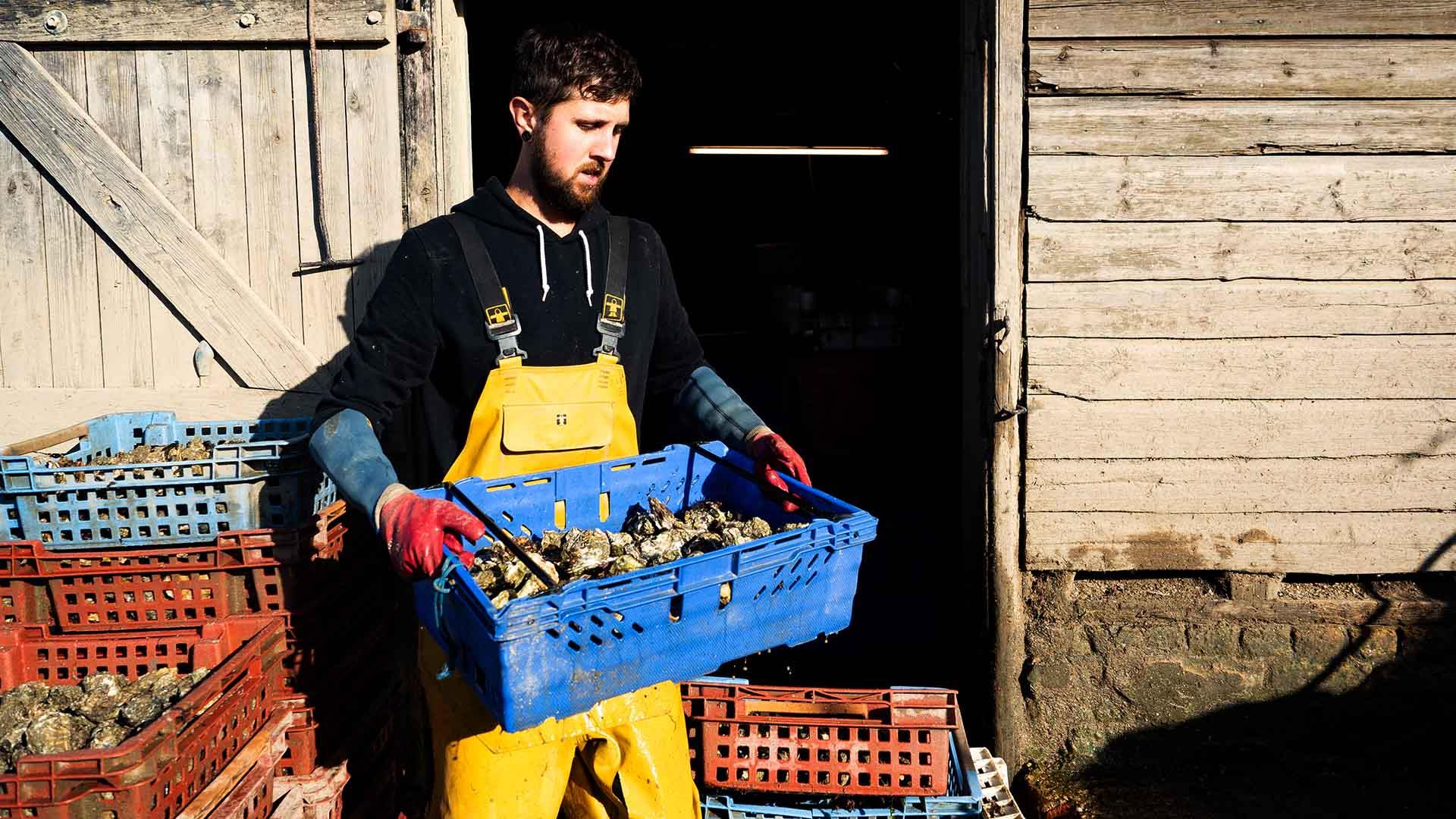 British oyster farmers served up a raw deal in Brexit uncertainty