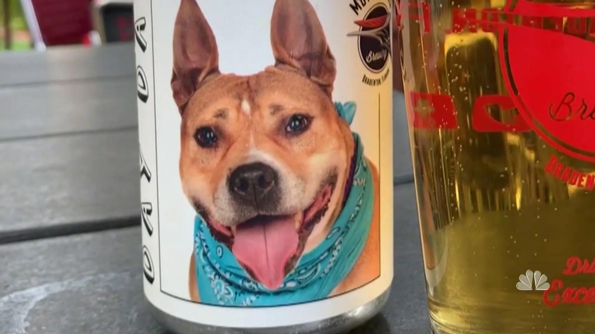 Beer can leads to Minnesota woman reuniting with missing dog
