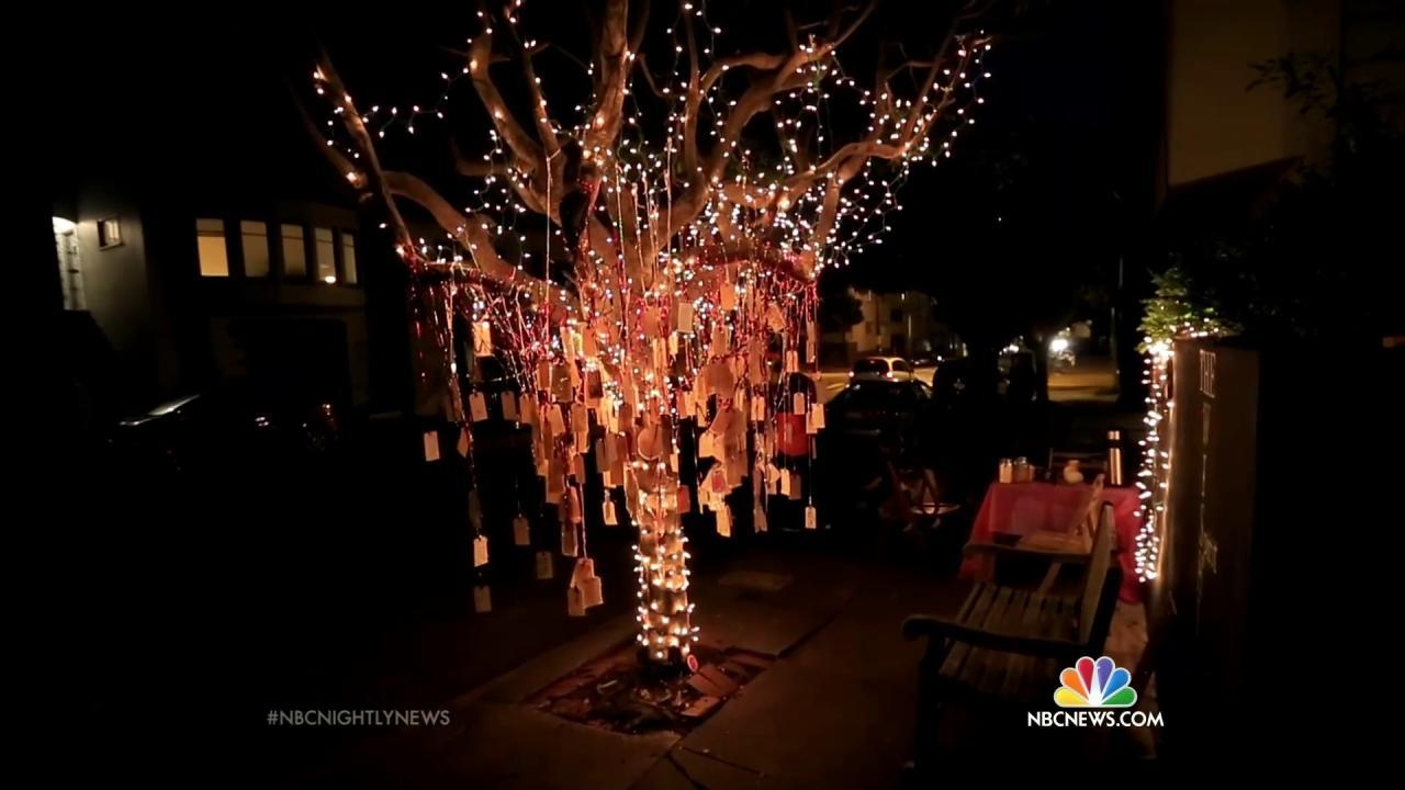 Christmas Decorated House San Francisco : Why a san francisco christmas tree is decorated with
