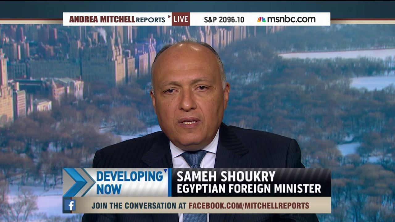 Egypt calls for UN coalition