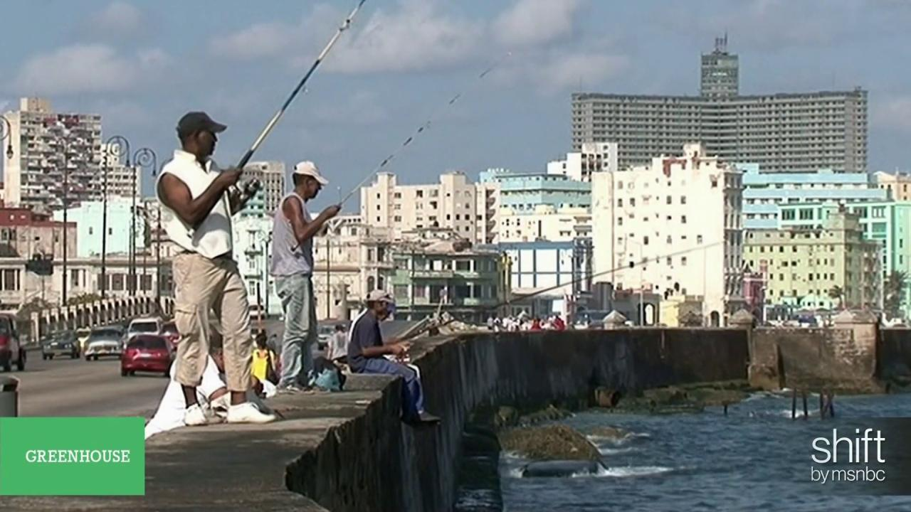 Could ending embargo hurt Cuba's environment?