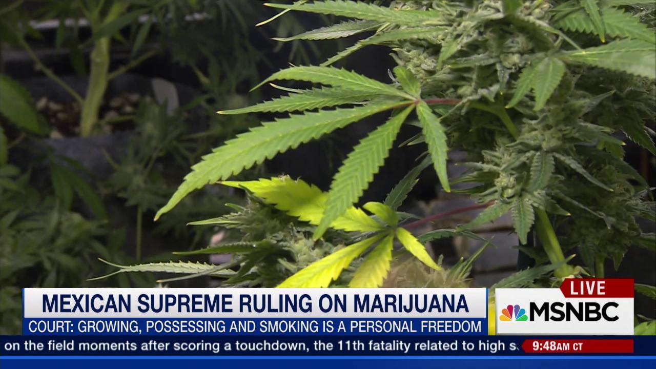 New marijuana ruling in Mexico