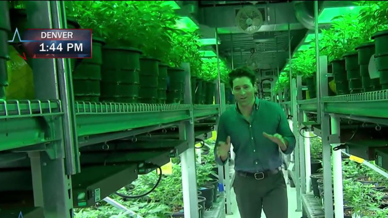 CO pot dispensary owner talks 2016 race