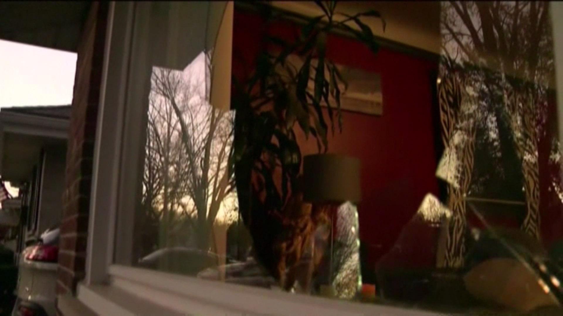 deer trashes home after crashing through window nbc news